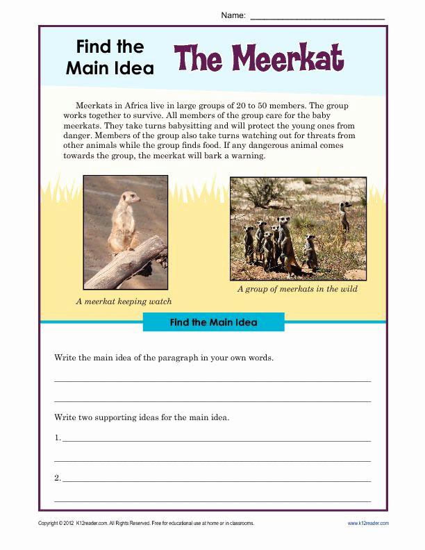 3rd Grade Main Idea Worksheets Beautiful 37 Free Printable 3rd Grade Reading Worksheets