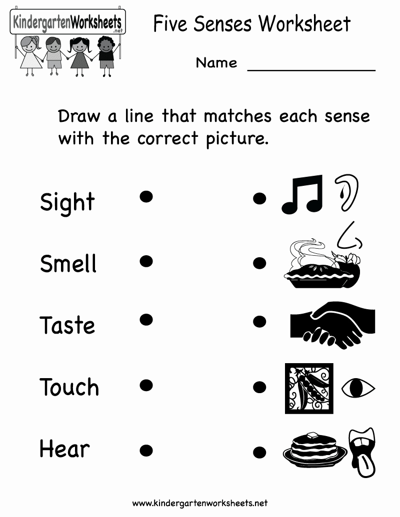 5 Senses Worksheets for Kindergarten Best Of Arab Unity School Grade 1 C