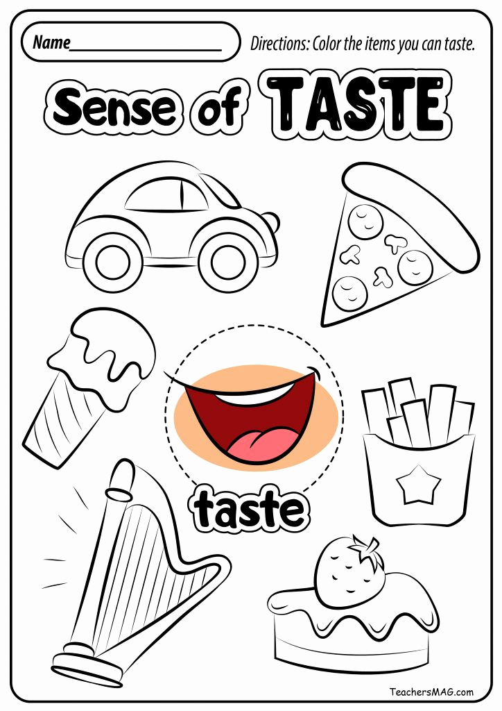 5 Senses Worksheets for Kindergarten New the Five Senses Taste Test