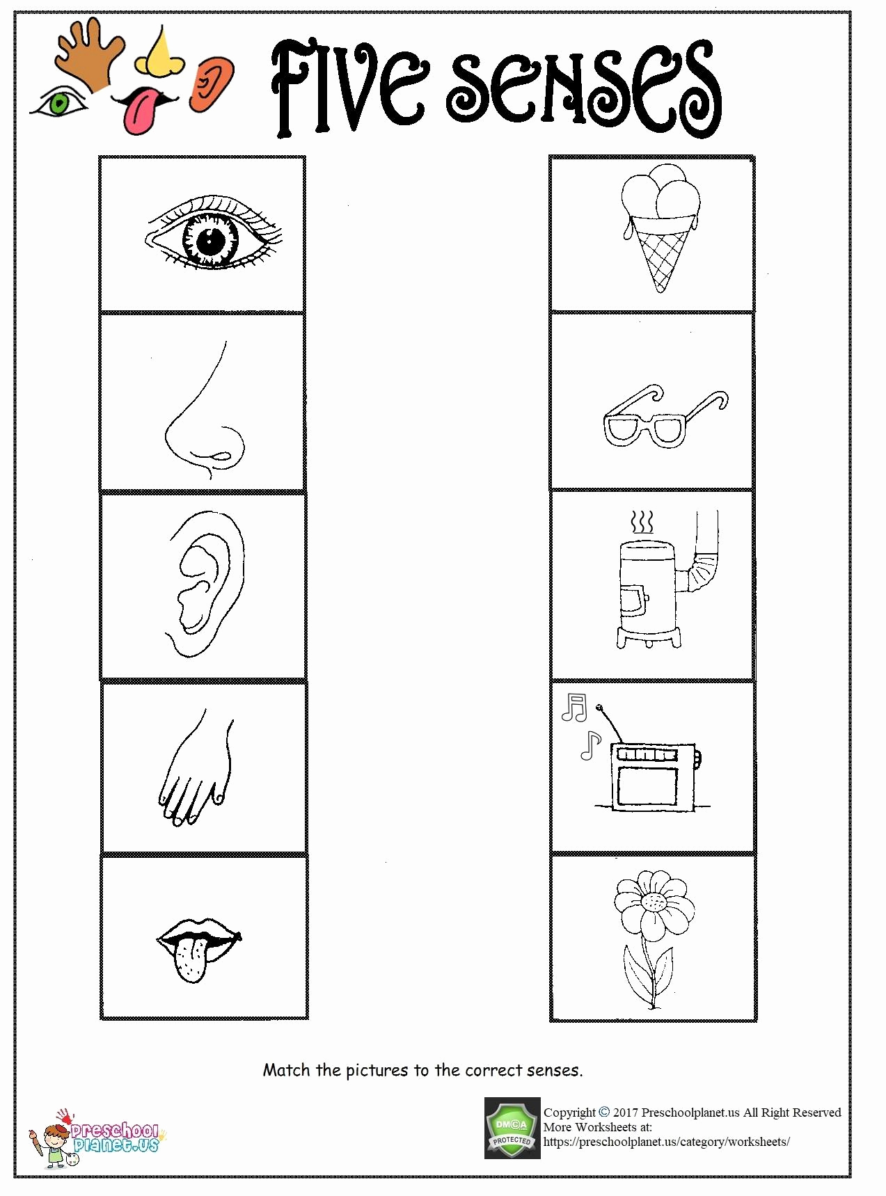 5 Senses Worksheets for Kindergarten Unique Printable Five Senses Worksheet