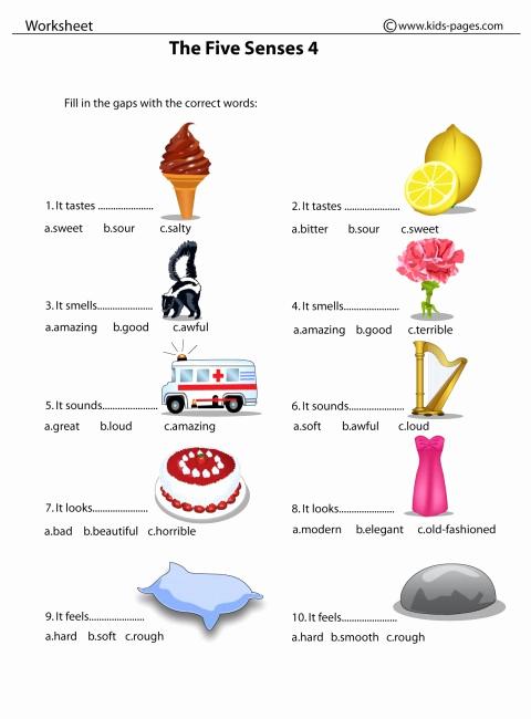 5 Senses Worksheets Pdf Elegant the Five Senses 4 Worksheet