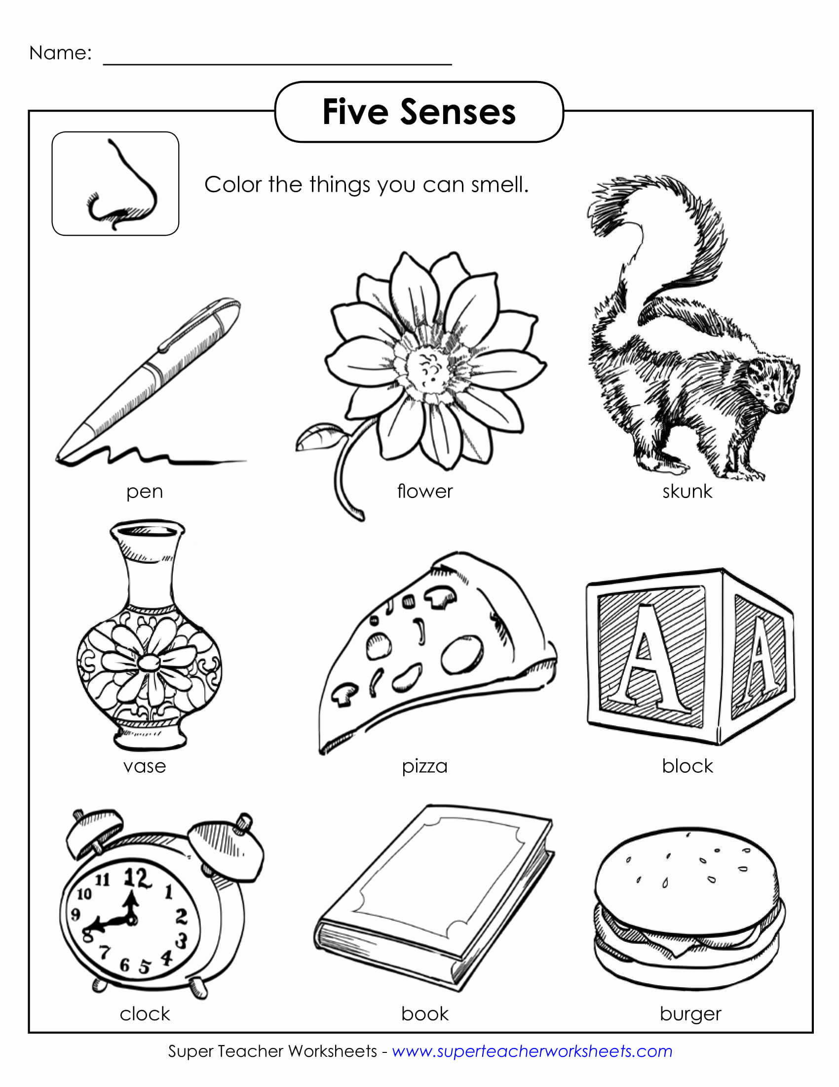 5 Senses Worksheets Pdf Lovely 5 Science Worksheets Examples for Students Pdf