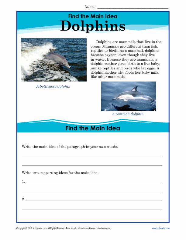 5th Grade Main Idea Worksheets Unique Main Idea Worksheet 5th Grade Worksheet