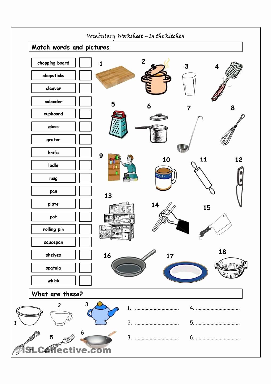 Basic Cooking Skills Worksheets Fresh 30 Basic Cooking Skills Worksheets