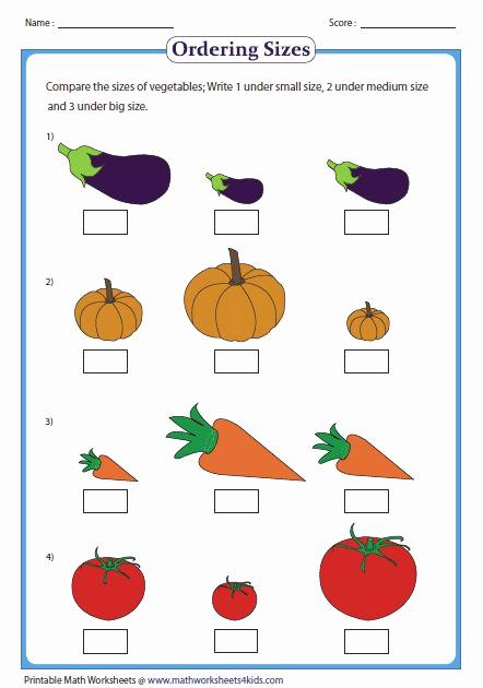 Big Vs Little Worksheets Beautiful Pinterest • the World's Catalog Of Ideas