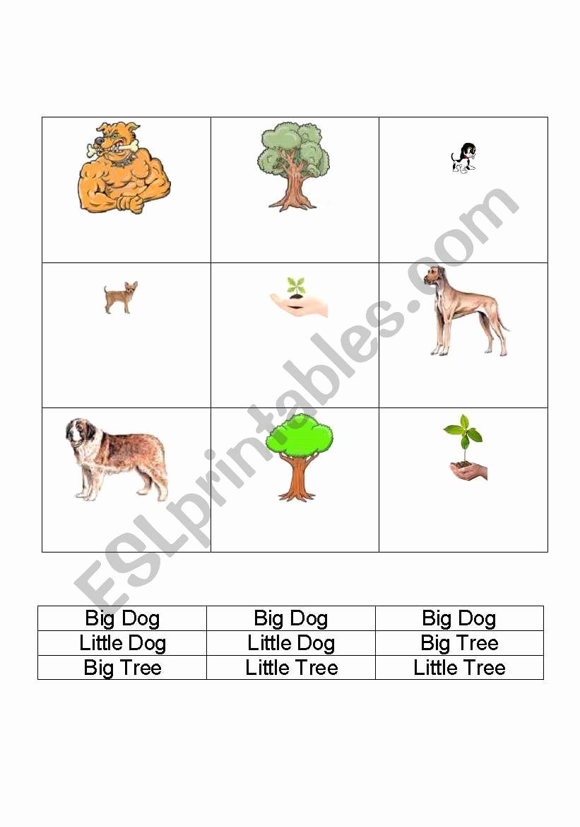 Big Vs Little Worksheets Lovely English Worksheets Big Vs Little