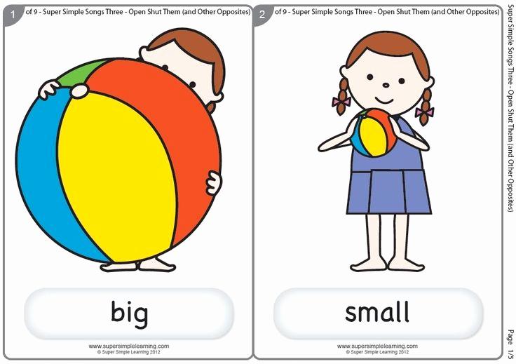 Big Vs Little Worksheets Luxury Big Small Flashcards