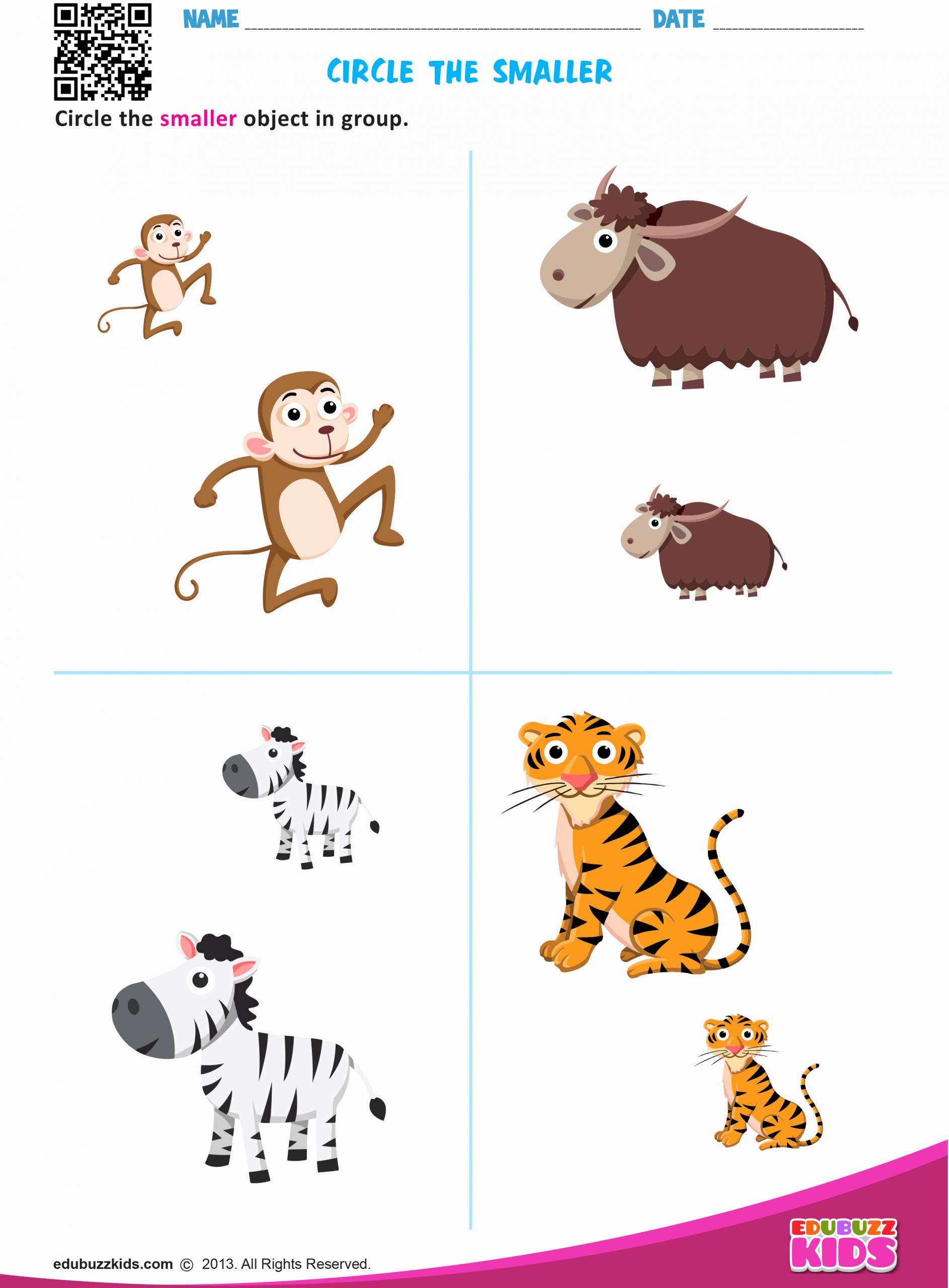 Big Vs Little Worksheets New Preschool & Kindergarten Math Big and Small Worksheets