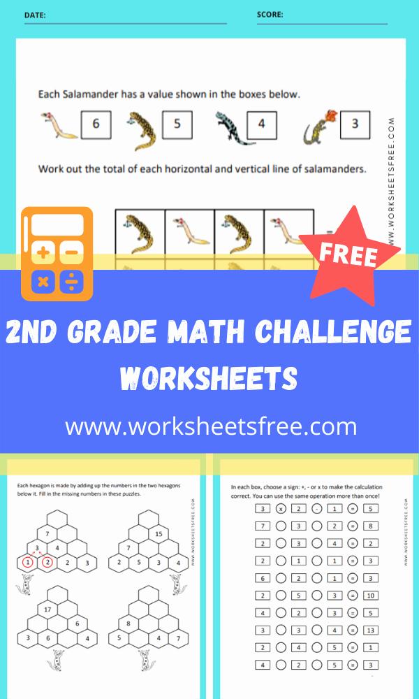 Challenge Math Worksheets Unique 2nd Grade Math Challenge Worksheets