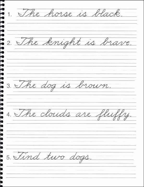 Cursive Sentences Worksheets Printable New D Nealian Cursive Handwriting Worksheets Pdf