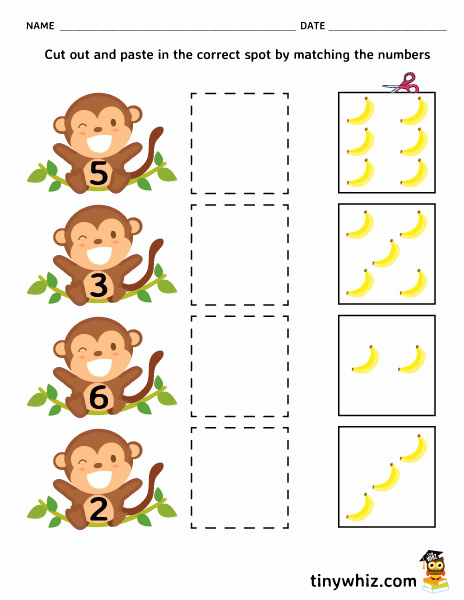 Cut and Paste Worksheets Free Beautiful Free Printable Cut and Paste Worksheet for Kindergarten