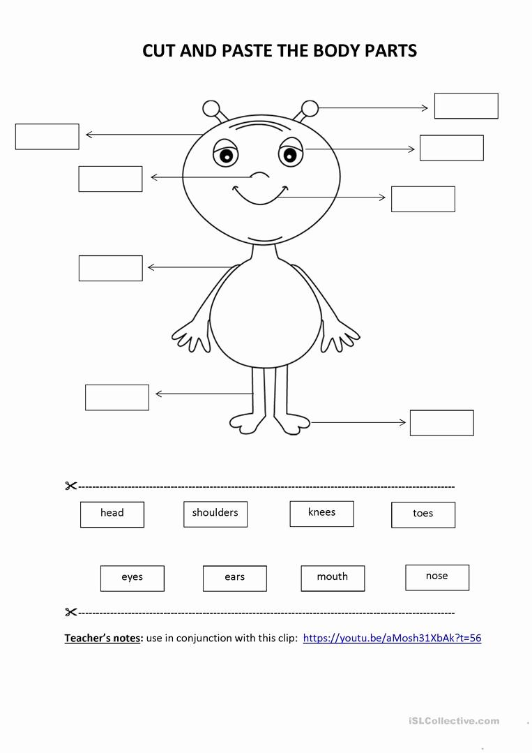 Cut and Paste Worksheets Free Elegant Cut & Paste Activity Body Parts English Esl Worksheets