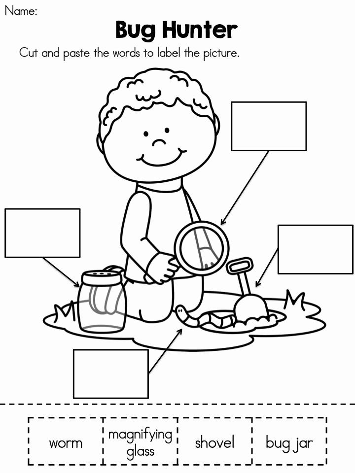 Cut and Paste Worksheets Free Unique 18 Best Of Worksheets Printable Kindergarten Mon