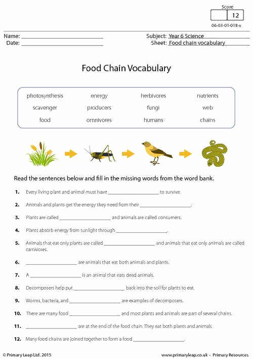 Ecology Worksheets Middle School Awesome Ecology Worksheets