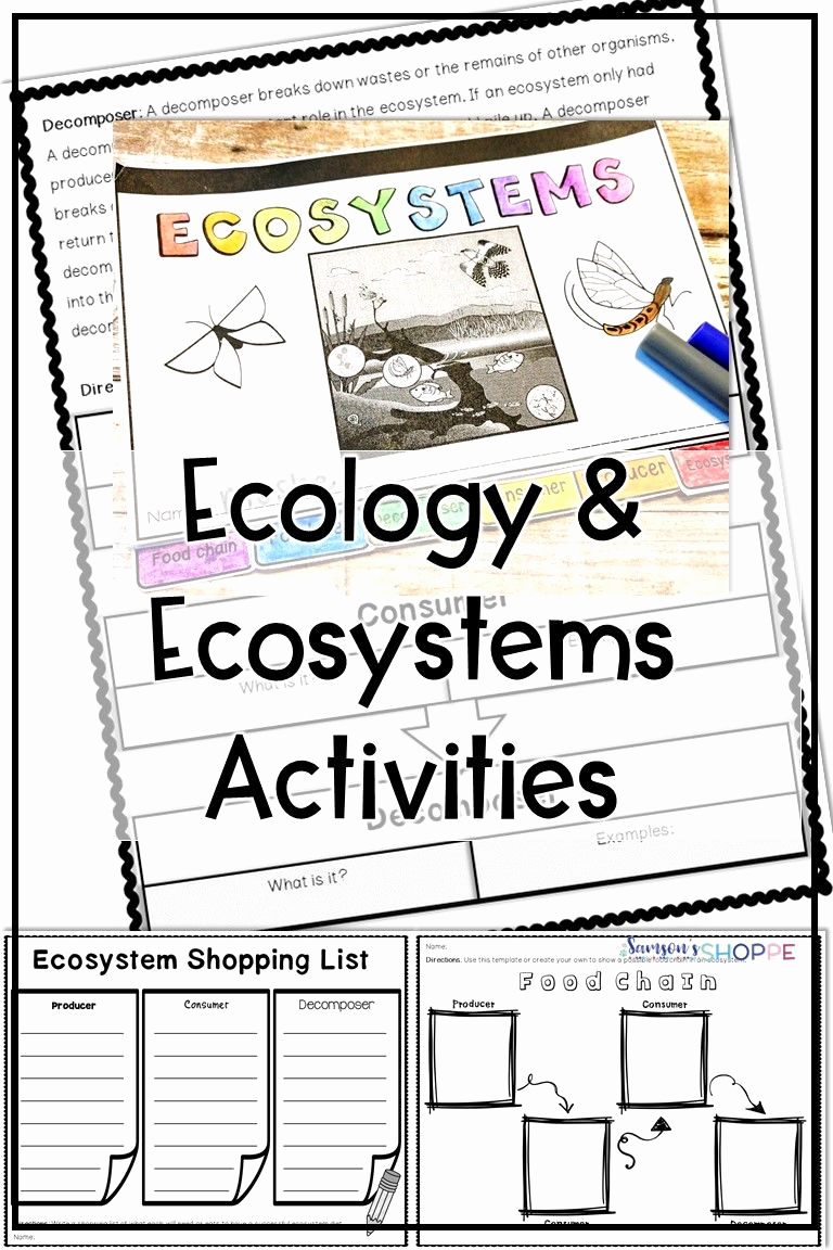 Ecology Worksheets Middle School Beautiful Ecology and Ecosystem Activity