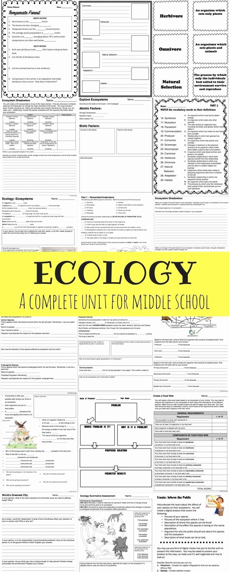 Ecology Worksheets Middle School Unique Ecology Full Unit