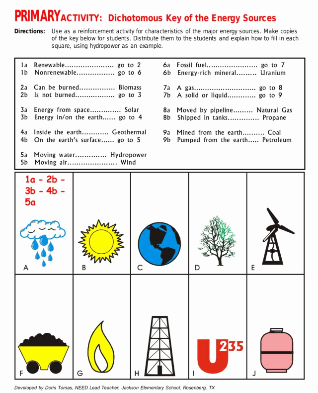 Energy 4th Grade Worksheets Unique Primary Activity Dichotomous Key Of Energy sources