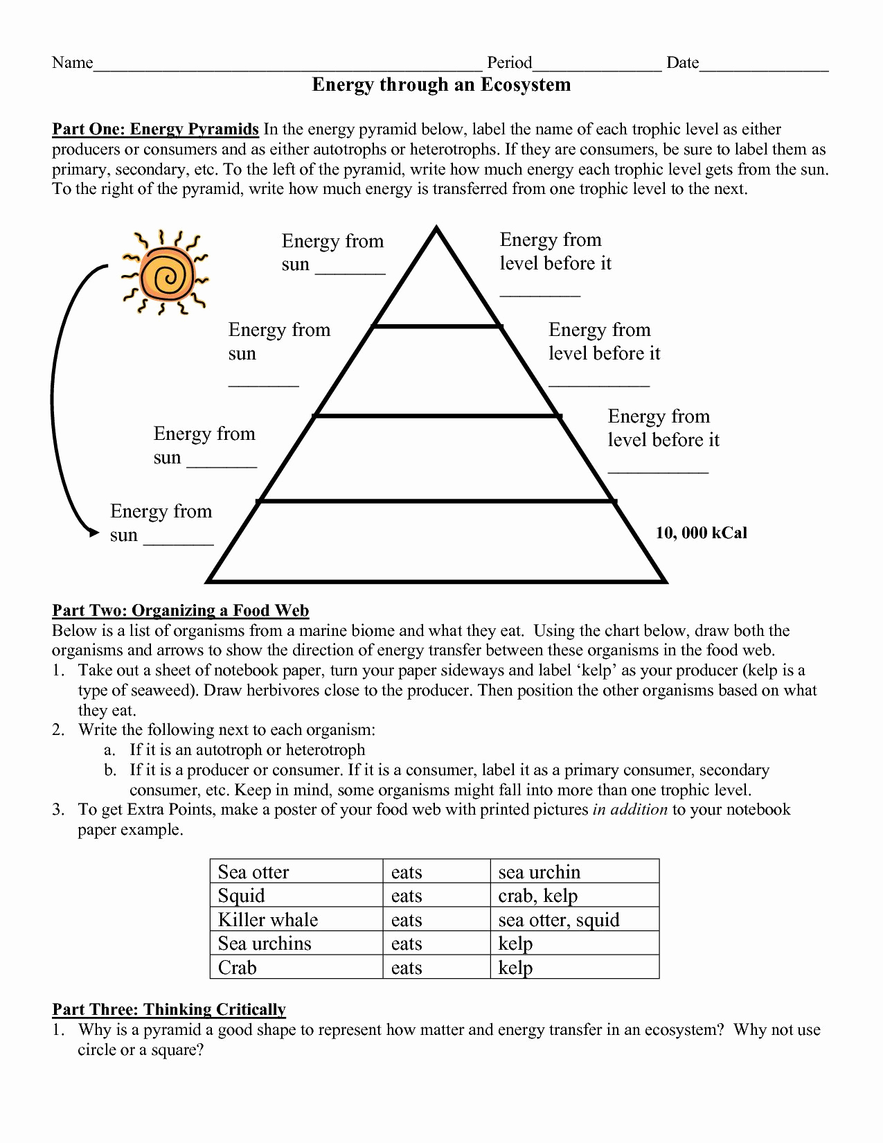 Energy Worksheets Middle School Pdf Beautiful Energy Flow In Ecosystems Worksheet Awesome 8 5b Protons