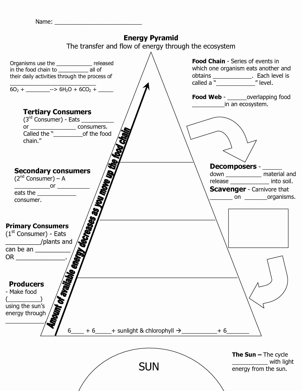 Energy Worksheets Middle School Pdf Lovely 50 Ecological Pyramids Worksheet Answer Key In 2020
