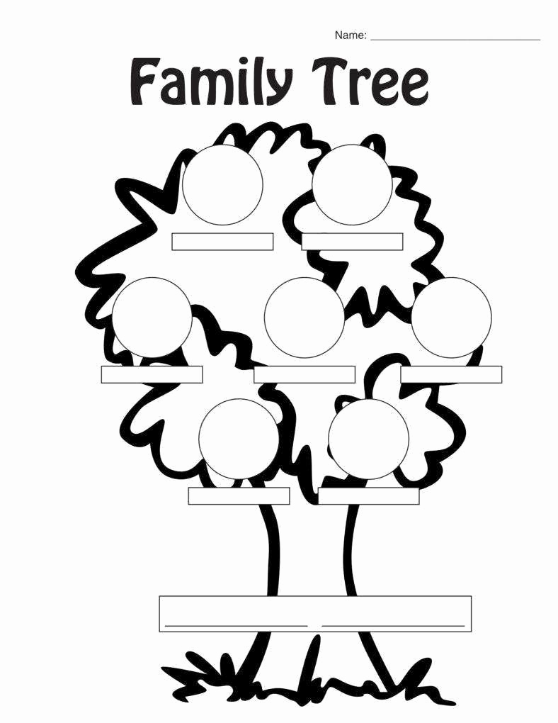 Family Tree Worksheets for Kids Unique 21 Examples Of Family Tree Pdf Doc