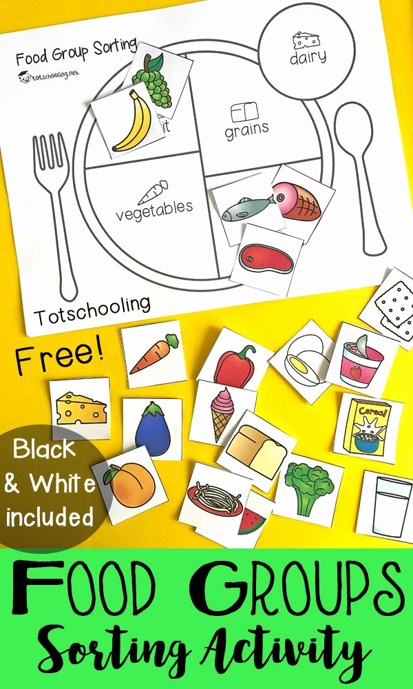 Five Food Groups Worksheets Beautiful Teach Kids About Healthy Eating with A Food Group sorting