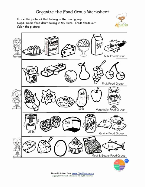 Five Food Groups Worksheets Fresh Printable Color and sorting Food Groups