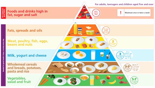 Five Food Groups Worksheets New 25 Five Food Groups Worksheets
