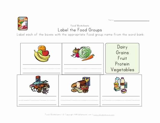 Five Food Groups Worksheets New 31 Five Food Groups Worksheet Worksheet Resource Plans