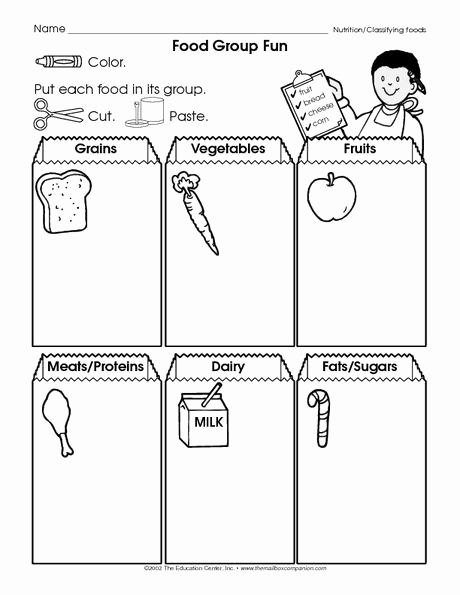 Five Food Groups Worksheets New the Mailbox