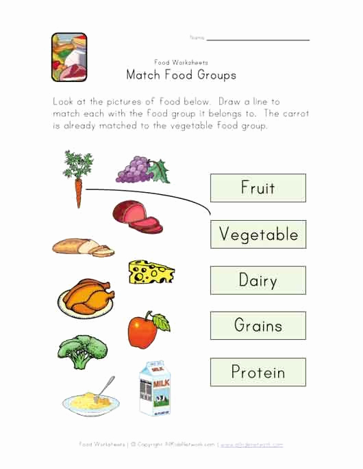Five Food Groups Worksheets Unique Match Food Groups Worksheet