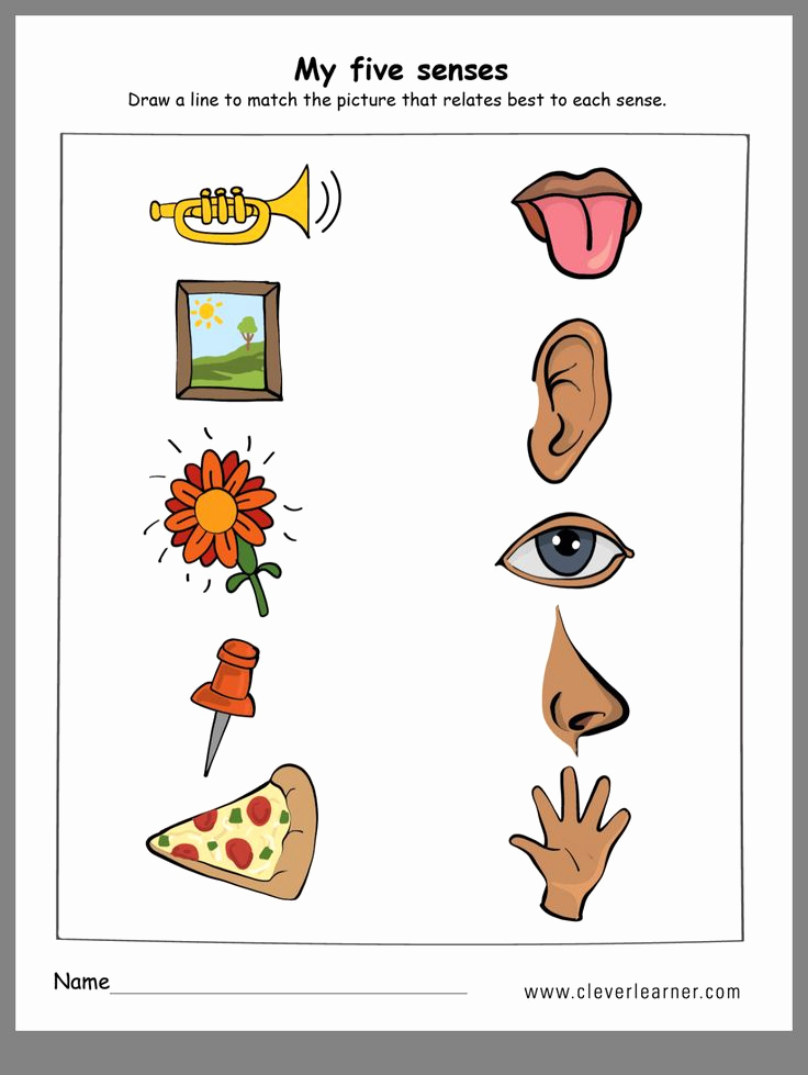 Five Senses Worksheets for Kindergarten Elegant Pin by Wenshan Liang On All About Me