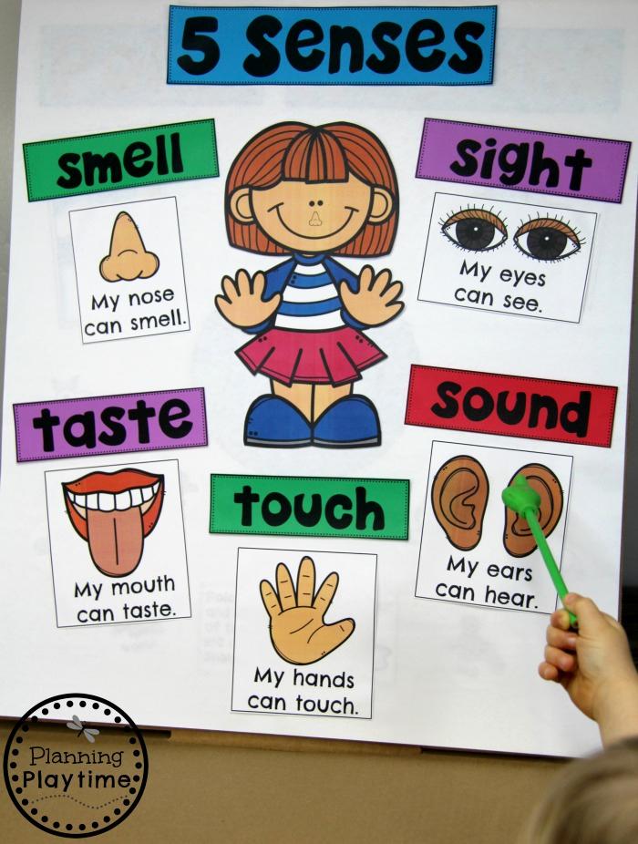 Five Senses Worksheets for Kindergarten Unique 5 Senses Planning Playtime