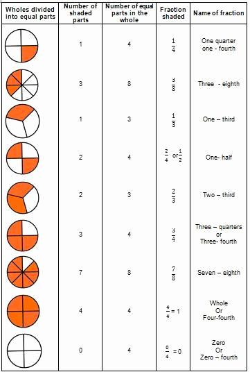 Fractions Worksheets First Grade Elegant Naming Fraction