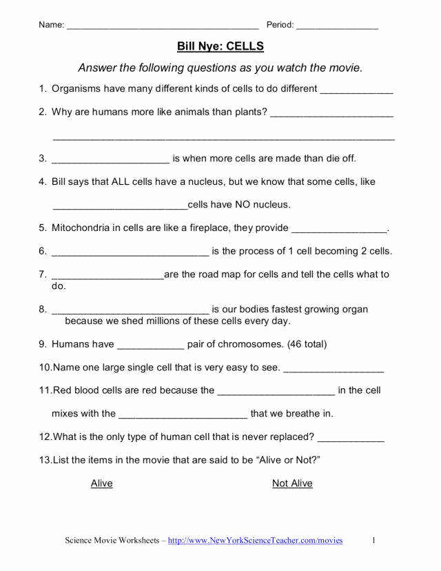 Free 8th Grade Science Worksheets Luxury 8th Grade Science Worksheets