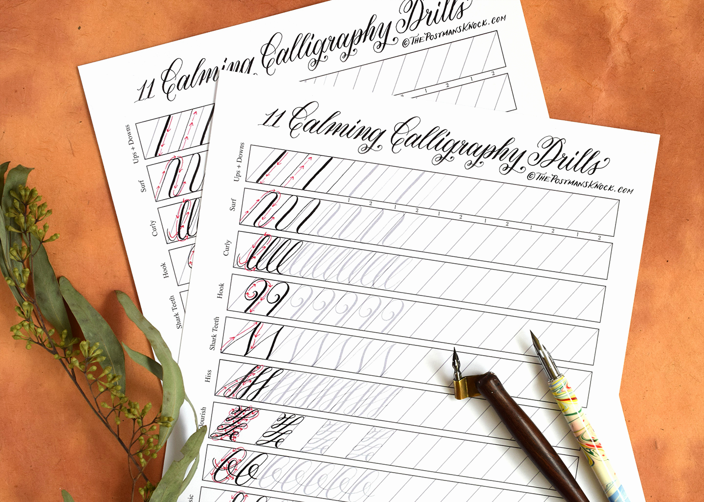 Free Calligraphy Worksheets Printable New 11 Calming Calligraphy Drills Printable Free Download