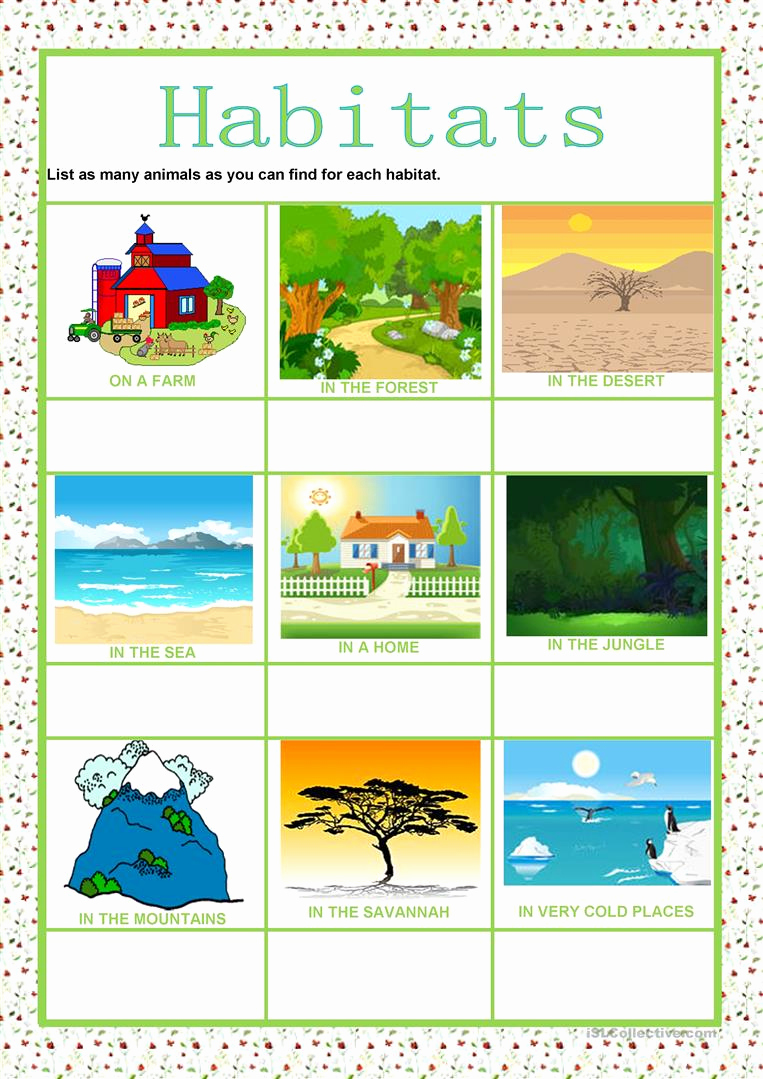 Free Habitat Worksheets Beautiful Animals Habitats Worksheet Free Esl Printable
