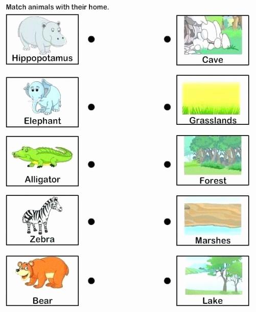 Free Habitat Worksheets Best Of Animal Habitat Worksheets for Kindergarten