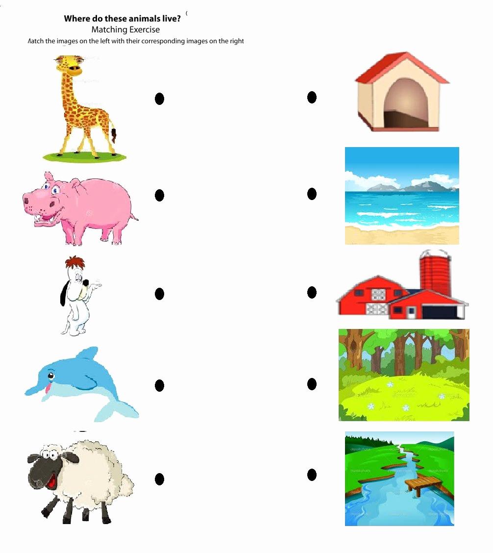 Free Habitat Worksheets Elegant Animal Habitat Worksheets for Kindergarten