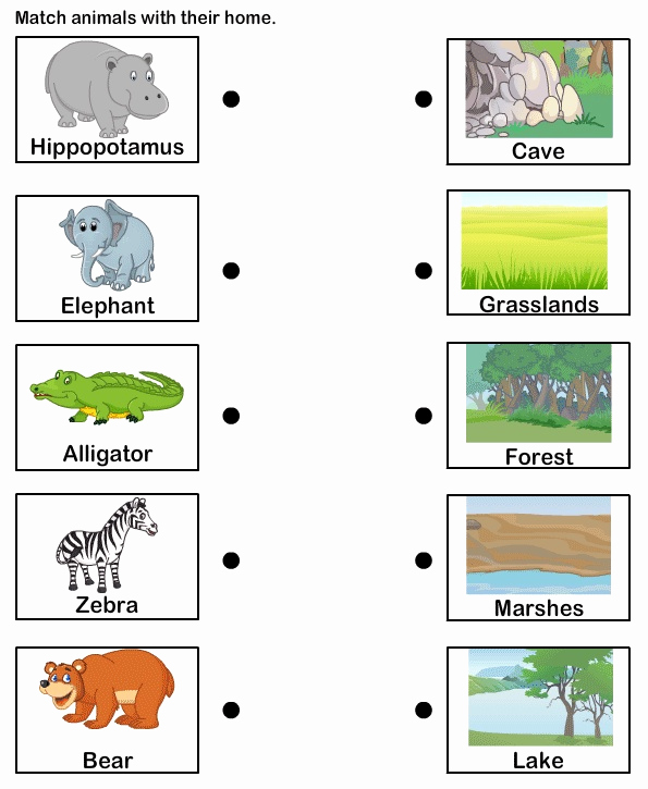 Free Habitat Worksheets Inspirational Students Could Match the Animal to Its Habitat