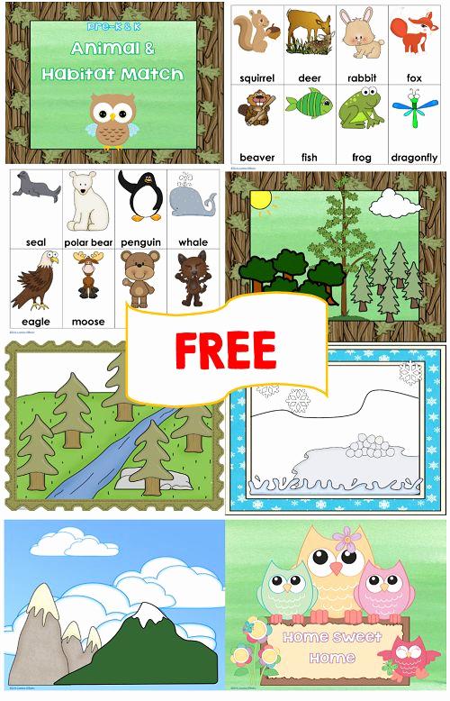 Free Habitat Worksheets Lovely Animal and Habitat Match Free Printables