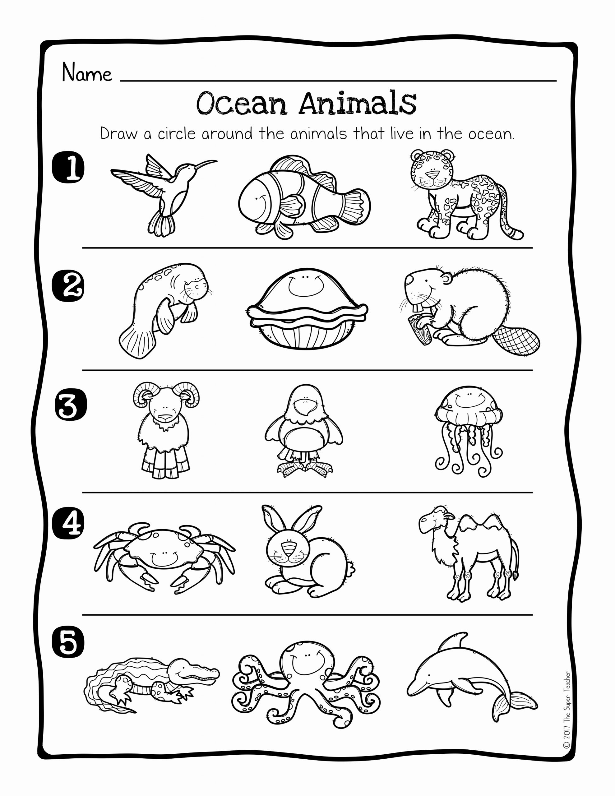 Free Habitat Worksheets Luxury Animal Habitats Science Activity and Worksheets the