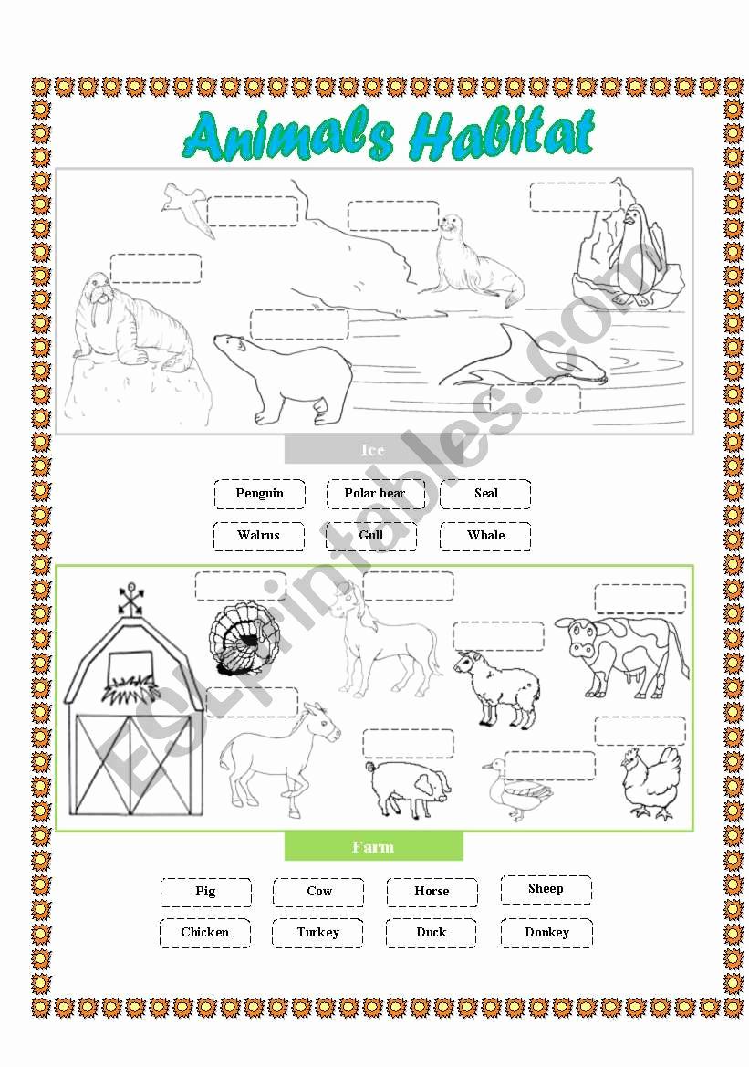 Free Habitat Worksheets Luxury Free Printable Worksheets Animal Habitats