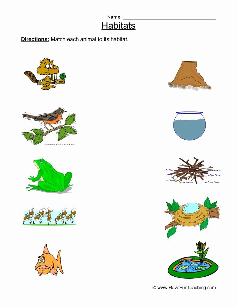 Free Habitat Worksheets Luxury Habitats and Biomes Worksheets