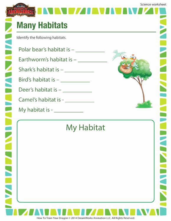 Free Habitat Worksheets Luxury Many Habitats Activity 1st Grade Science Worksheet sod