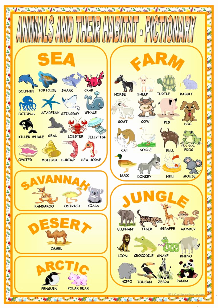 Free Habitat Worksheets Unique Animal Habitat Worksheets Free Printable