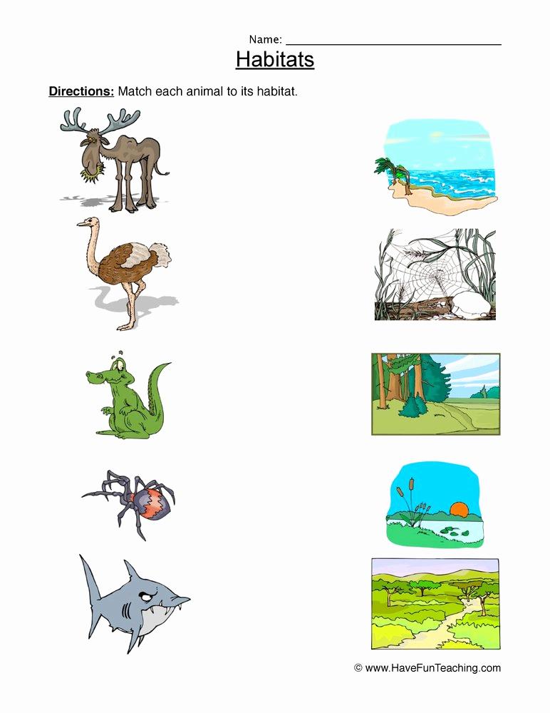 Free Habitat Worksheets Unique Matching Animal Habitats Worksheet