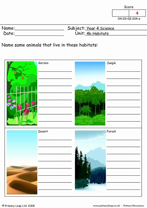 Free Habitat Worksheets Unique Primaryleap What Animals Live Here Worksheet