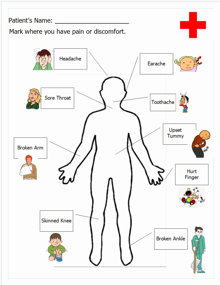 Free Human Body Worksheets Awesome Free Printable Human Body Worksheets – Learning How to Read