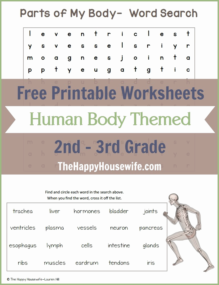 Free Human Body Worksheets Lovely Human Body themed Worksheets Free Printables the Happy