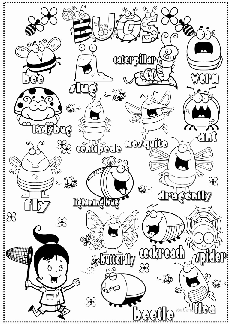 Free Insect Worksheets Beautiful Insects Worksheet Free Esl Printable Worksheets Made by
